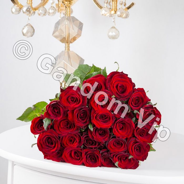 خرید گل رز
