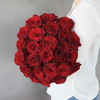 معنی گل رز قرمز