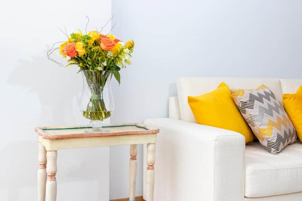 کدام گل یا گیاه برای اتاق های روشن مناسب است