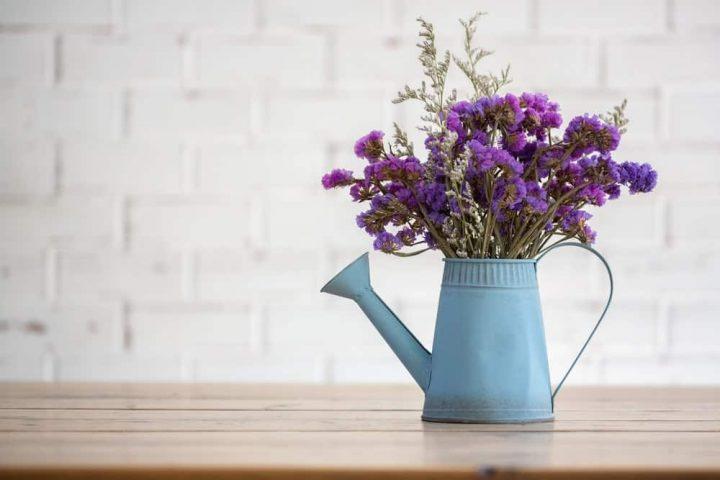 بهترین گل و گیاه برای هر قسمت از خانه