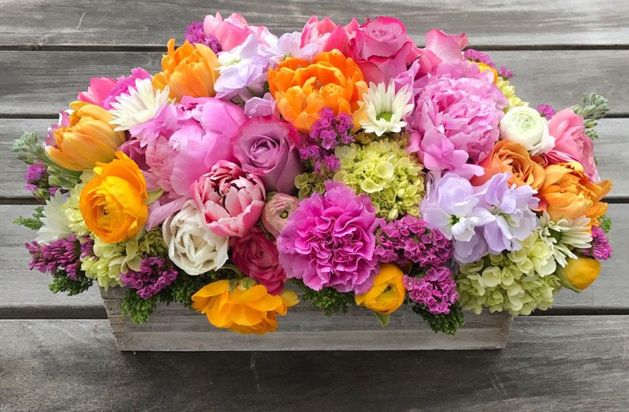 ترکیب گل آلاله با دیگر گل ها