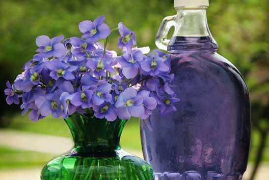 فواید دارویی گل بنفشه