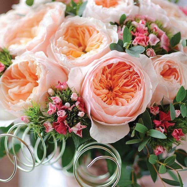 گل رز جولیت