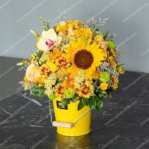 سطل گل آفتابگردان