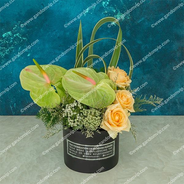 باکس گل رز نباتی