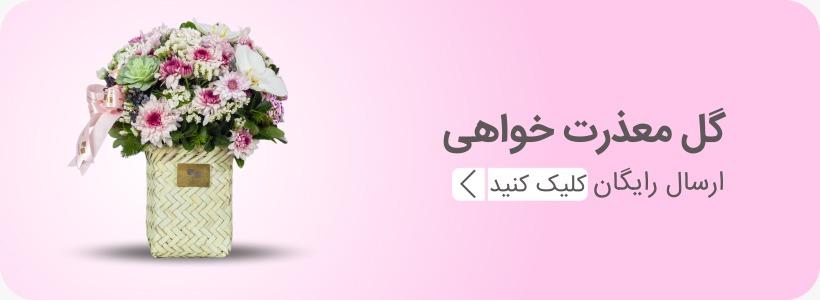 خرید گل معذرت خواهی